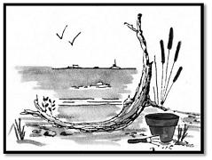 Rye Driftwood Garden Club 1